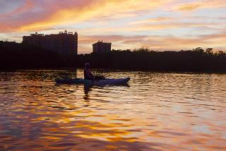 Sunset Kayaking in Sarasota