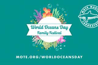 Mote World Oceans Day