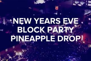 Sarasota New Year's Eve Pineapple Drop 2020