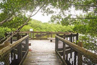 Quickpoint Nature Preserve. Photo Credit: Robin Draper.