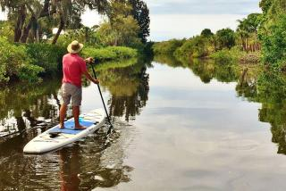 SUP on Alligator Creek. Photo credit: Liz Sandburg.