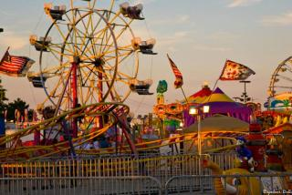 Sarasota County Fair