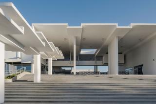 Sarasota High School - Anton Grassl