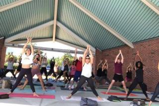Sarasota Yoga Festival