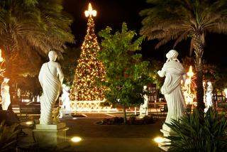 Holiday Events in North Sarasota County