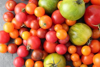 Tomatoes. Photo Courtesy Nicole Coudal