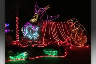 Christmas Trolly Tour Of Lights, Sarasota, Fl 2020 Sarasota holidays: Let there be lights | Visit Sarasota