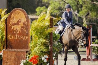 Premiere horse show facilities in Sarasota | Visit Sarasota