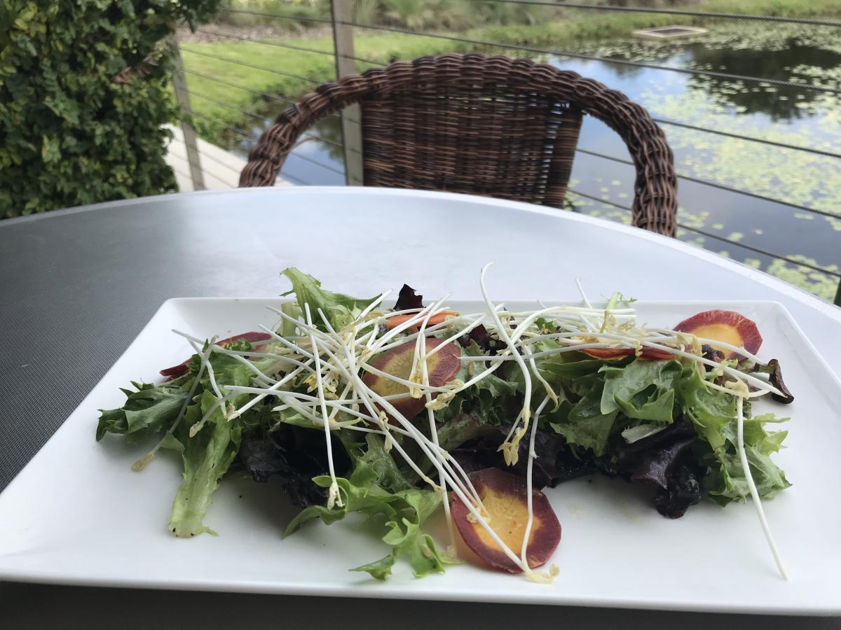 salad at muse restaurant at the ringling museum