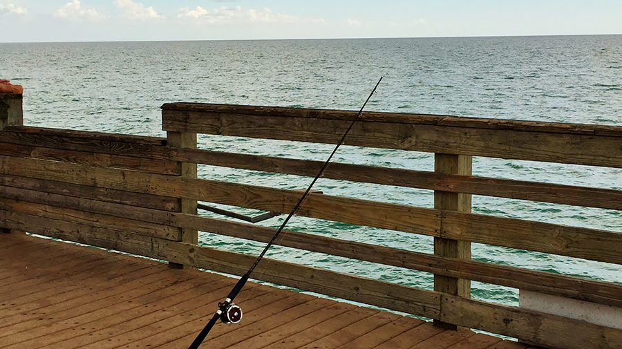Venice Fishing Pier - Photo credit: Liz Sandburg