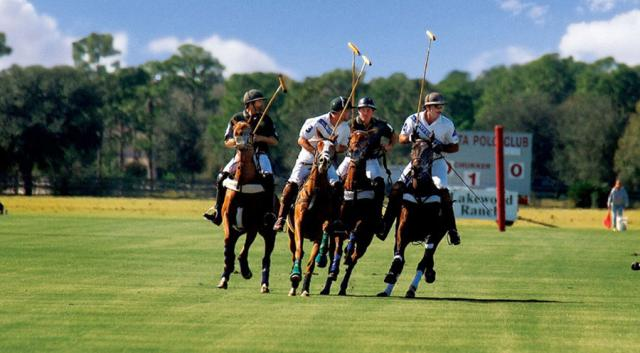 Witness amazing athleticism of horse and rider, as they bump and jostle with their opponents. Polo is an easy game for a first-time spectator to enjoy.