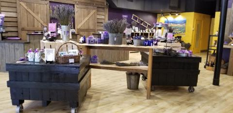 Grand Opening of Pelindaba Lavender