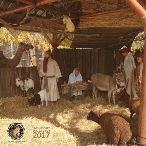 Live Nativity at the Big Cat Habitat