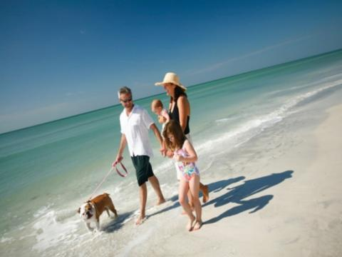 341_640x480.jpg - Vacation Rentals in Paradise