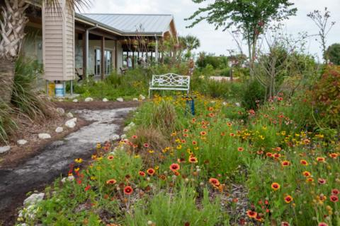 Sarasota Audubon Society Nature Center - The Nature Center is nestled within a native plant garden at the Celery Fields.