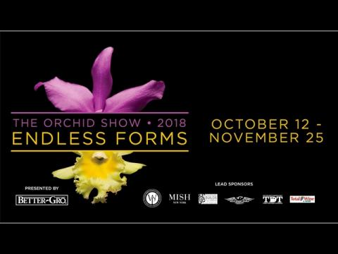 The Orchid Show: Endless Forms presented by Better-Gro®