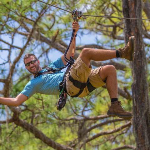 Fun In The Trees