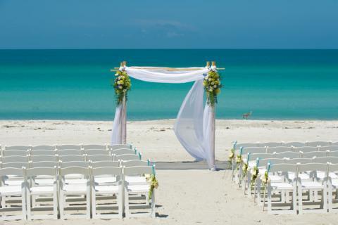 Zota Wedding Arch