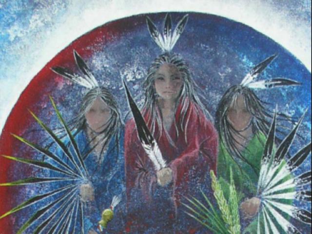 12th Annual Sarasota Native American Indian Festival