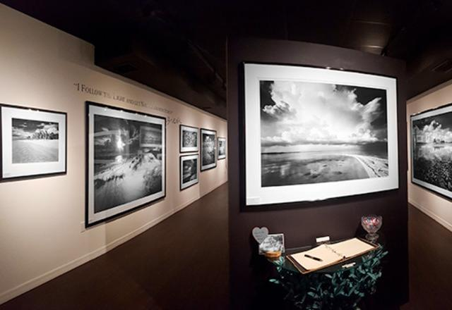 St. Armands Gallery