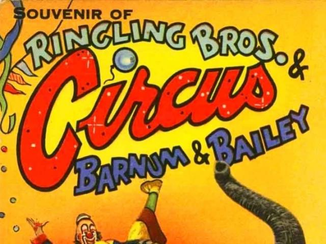 Circus Tour - Bob our Circus City Tour Guide takes you on a journey into the past to share stories of interesting characters who called Sarasota Circus City!