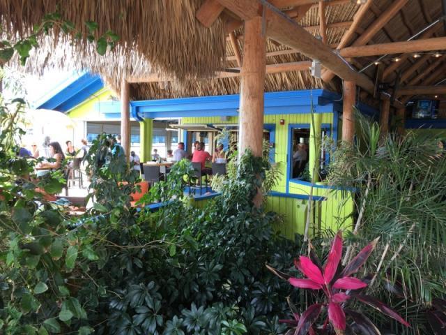Lush Florida foliage, fresh seafood & frosty frozen drinks!