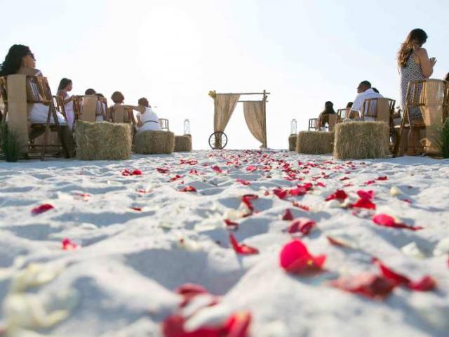 Country Fair Themed Beach Wedding Package