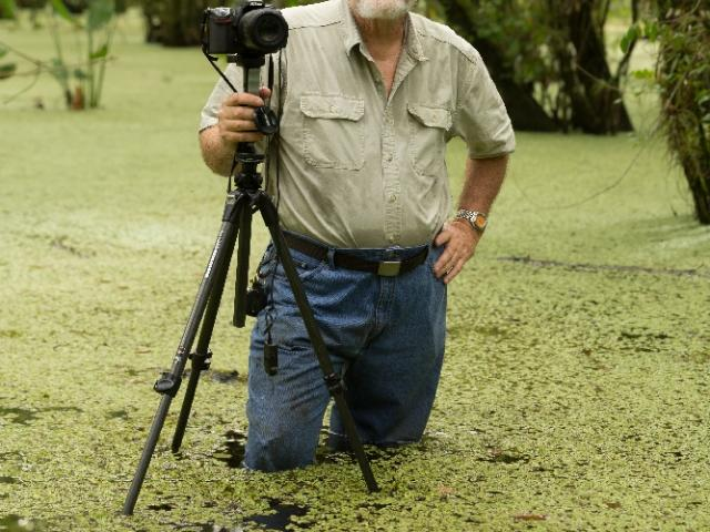 "FNPS, Mangrove Chapter Presents Roger Hammer, ""WIld Orchids,"""