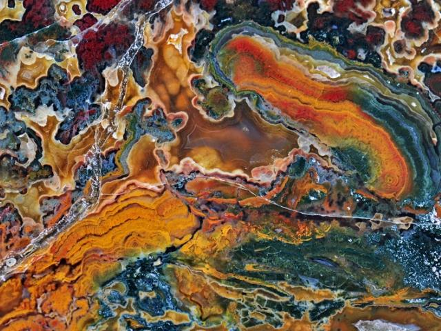 Gulf Coast Mineral Fossil and Gem Club Annual Sale