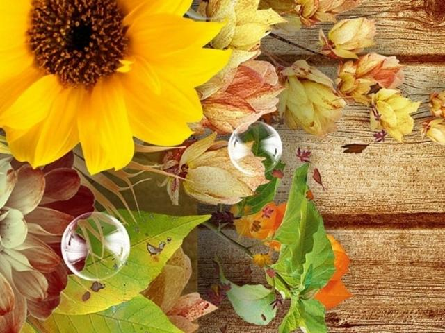 Lemon Bay Garden Club's Fall Garden Tour & Fair!!!