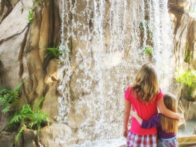 447_742x480.jpg - Waterfall in Children's Rainforest