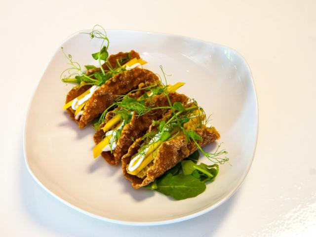 """Rabbit Tacos - Our Rabbit Tacos were named """"Best Global Tacos"""" in Sarasota, and are an adventure in flavorful dining!"""