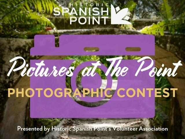 Pictures at The Point
