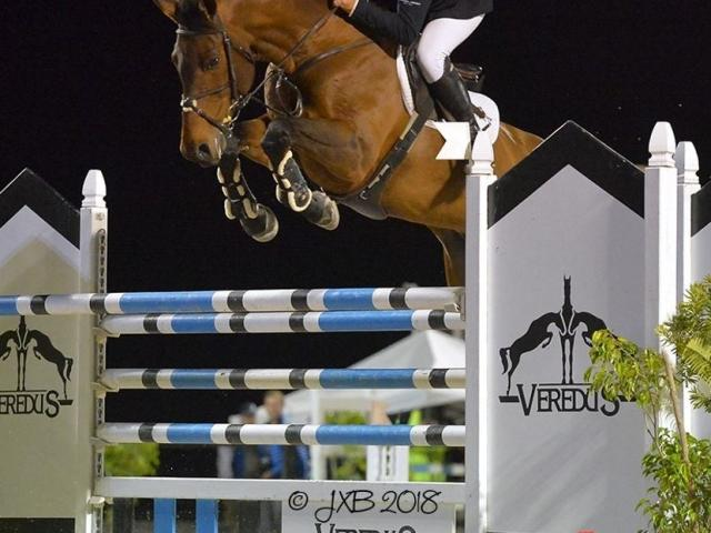 Grand Prix Horse Show Jumping