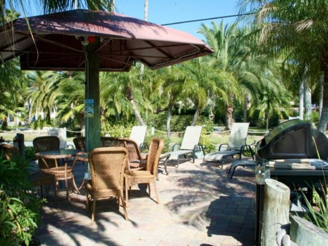467_720x480.jpg - Tropical Tiki Huts and Garden BBQ's for your enjoyment