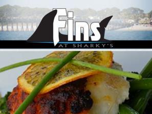 3005_640x480.jpg - Fins at Sharky's