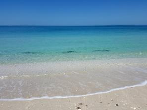 Casey Key Beach - Our private part of the Beach always has blue water and tons of sharks teeth!!