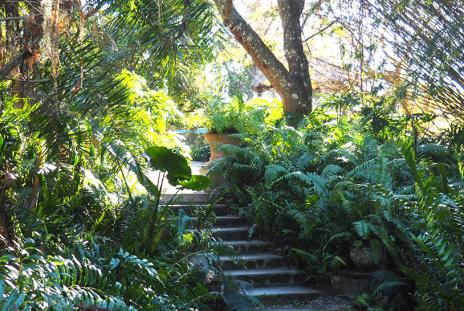 Jungle Walk at Historic Spanish Point.  Photo Courtesy Lauren Jackson