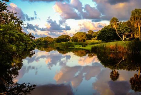 Phillippi Creek by Matt Sandburg