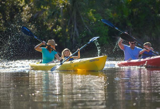 Local Attractions Go Have Fun In Sarasota County Visit Sarasota - The florida kayaking guide 10 must see spots for paddling