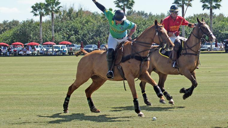 Sarasota Polo Club.  Photo credit: Robin Draper.