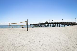 Sarasota beaches Nude Photos 44