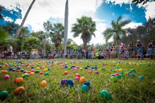 Easter egg hunt in sarasota