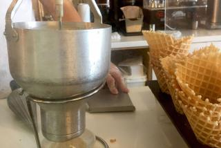 Frozen Treats in Sarasota County - Waffle Cones