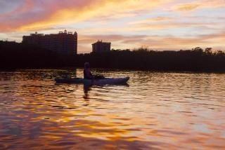 Sunset Kayaking in Sarasota