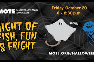 Night of Fish, Fun & Fright - Mote Marine Laboratory & Aquarium