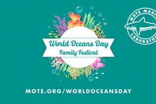 Mote World Oceans Day