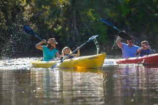 Kayaking in Sarasota County