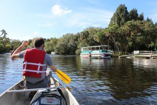 Snook Haven canoe in Sarasota Florida