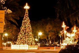 St Armands Holiday Lights